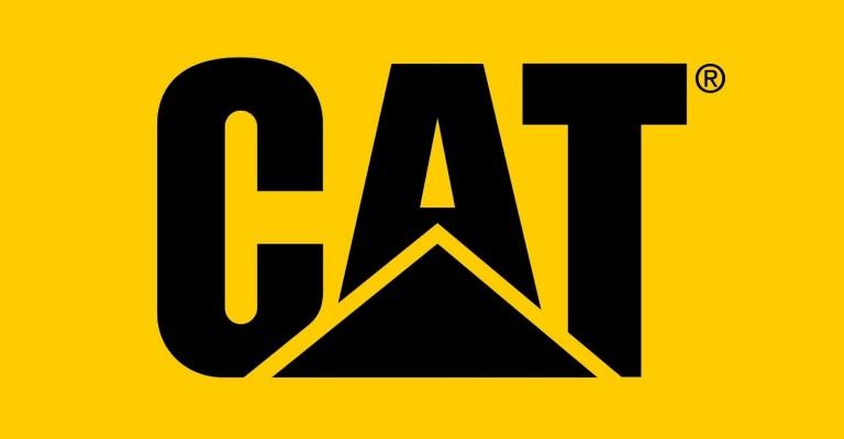 Cat FootwearSurvey